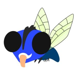 flashcard-color-insect-fly-langaw