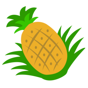 huni-huni-flashcard-pinya-pineapple-colored